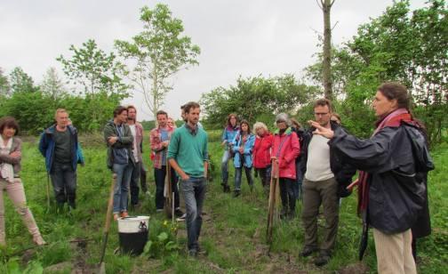 Coördinatie voedselbos aanleg Roggebotstaete