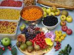 foodforestketelbroek_oogst