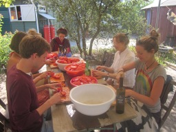 tomatenpuree en zongedroogde tomaat in wording