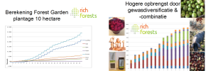 forest garden opbrengst grafieken RichForests