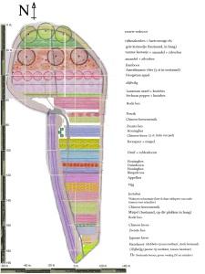 Roggebotstaete voedselbos I - schematisch beplantingsplan